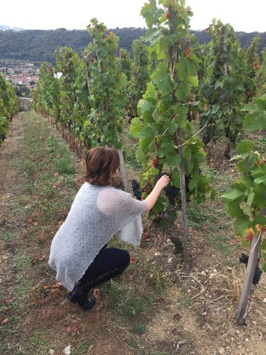 Sampling Syrah in Côte Rôtie (with permission of course!)