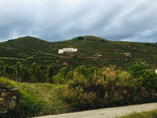 Guigal vineyards
