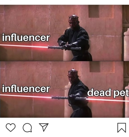 IG Dead Pet Meme